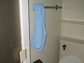 saru-towel.jpg