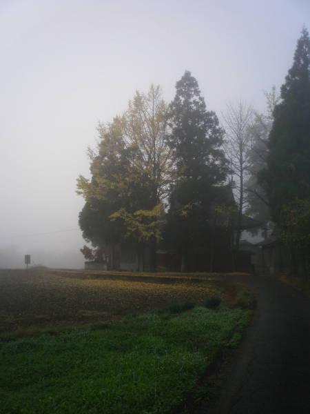 200911232.jpg