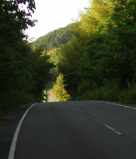 201005152.jpg
