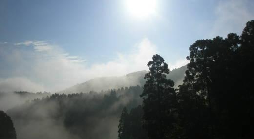 201006031.jpg