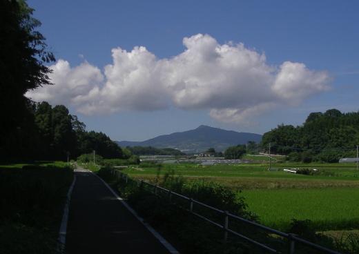 201007171.jpg