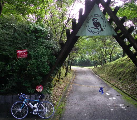 20100722YAGOYAMA.jpg