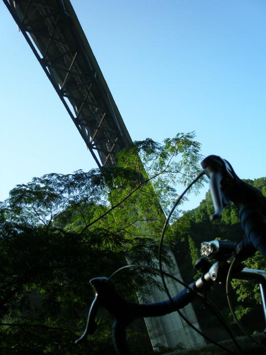 201008194.jpg