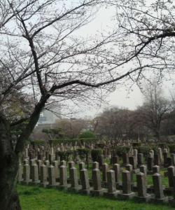 真田山:陸軍墓地