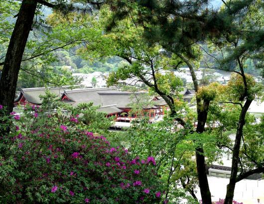 厳島神社下望