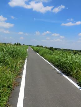 荒川自転車道路