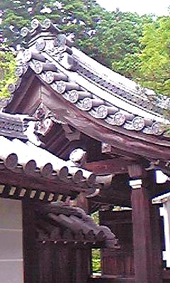 権現堂門090528_1504~01