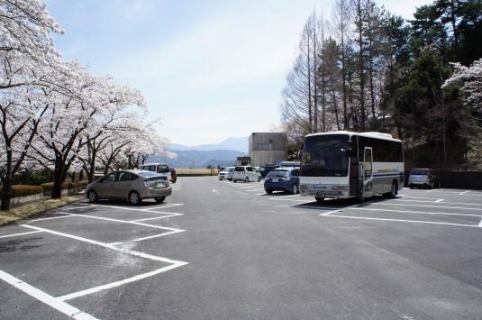 桜 殿原スポーツ公園 駐車場