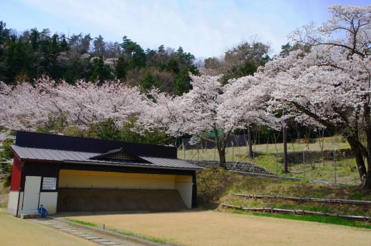 桜 殿原スポーツ公園 弓道場