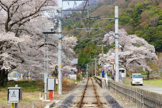 桜 塩之沢駅 線路