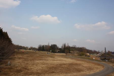 古河総合公園11