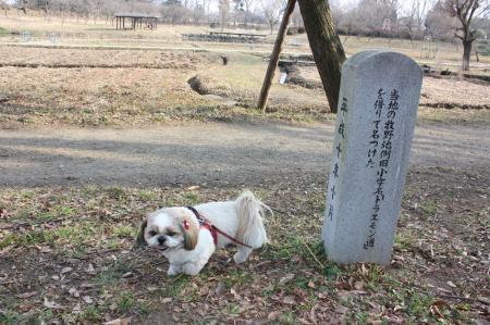 古河総合公園7
