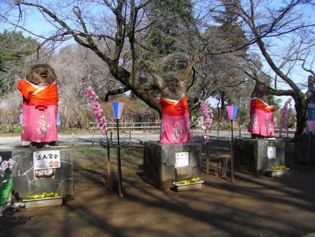 タヌキのお雛様!!!∑(゚ロ゚!5