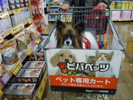 【へちまデンタル】買ったけど・・・4