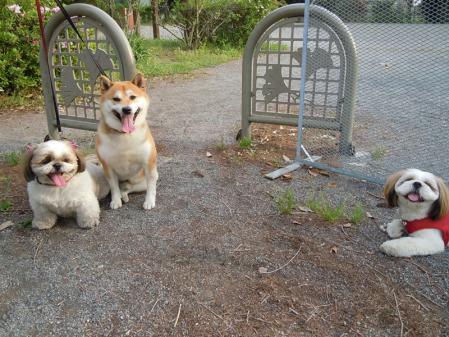 いつもの公園で待ち合わせ♪3