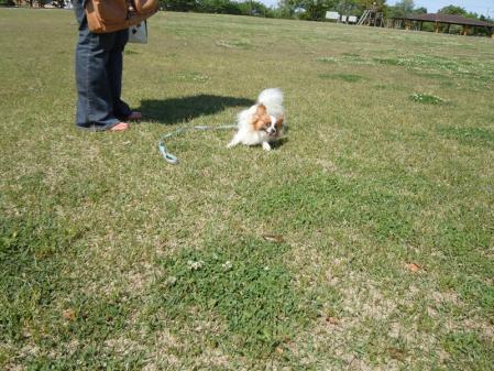 初デート!? in公園5
