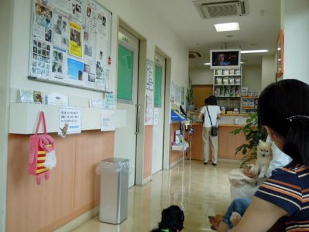 血尿で病院1