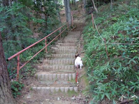 吉見百穴☆山登り編4