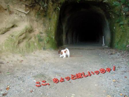吉見百穴☆山登り編3