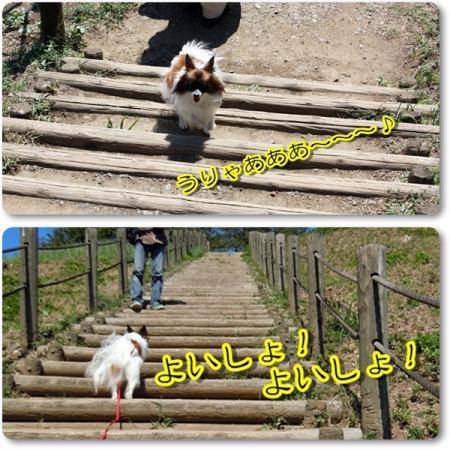 古墳の階段 の~ぼるぅ~♪3