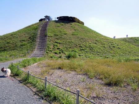古墳の階段 の~ぼるぅ~♪7