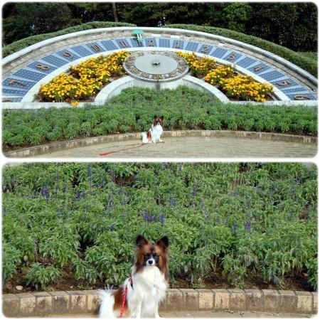 稲毛海浜公園と千葉ポートタワー3