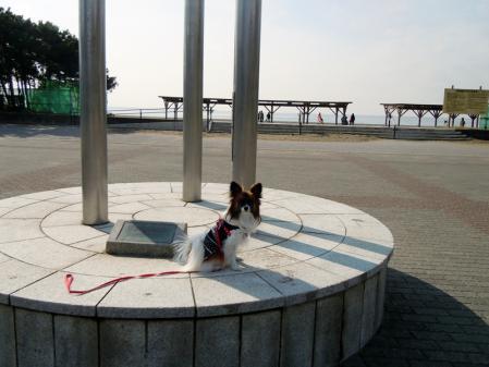 稲毛海浜公園と千葉ポートタワー1