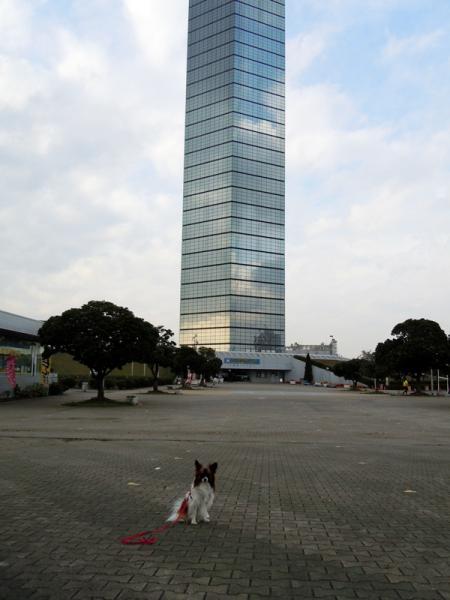 稲毛海浜公園と千葉ポートタワー10