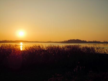 夕陽の小径で・・・7