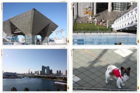 IMG_0661_convert_20091221223014-tile_convert_20091222135805.jpg