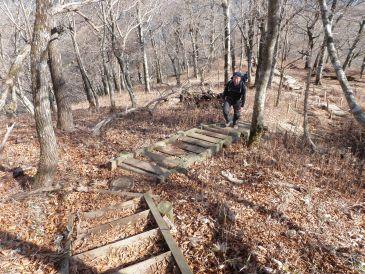 0911丹沢山手前の木道階段