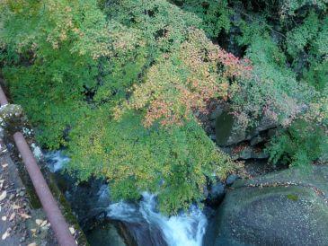 0911本谷川の