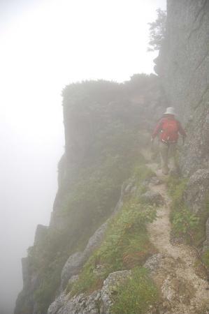 2,仙涯嶺からの登山道24