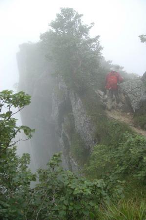 2,仙涯嶺からの登山道25