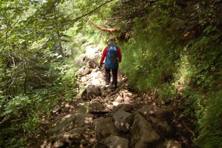 117蓮華温泉への下山路