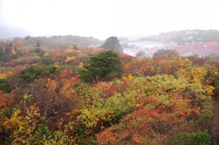 4登山口付近の紅葉