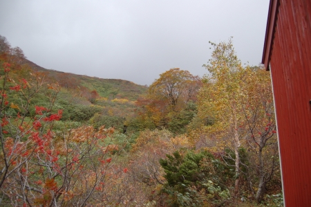 72小屋付近の紅葉