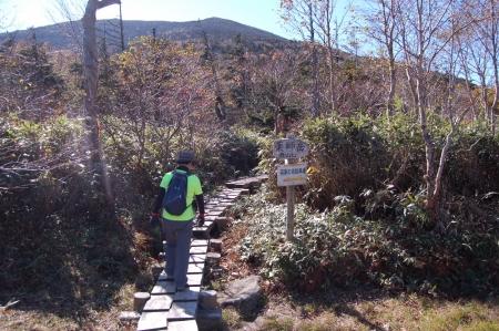 135薬師岳登山口