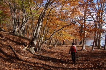 8阿世潟付近の紅葉