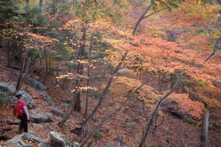 39梵字岩付近