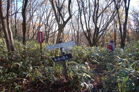 4高笹山への尾根へ