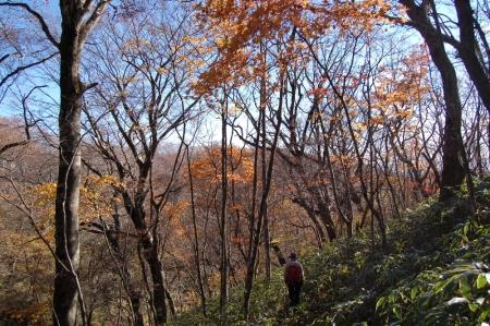 5高笹山への尾根へ