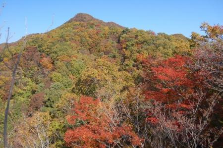 12中武生山