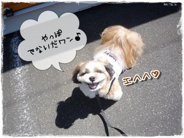 2010-01557.jpg