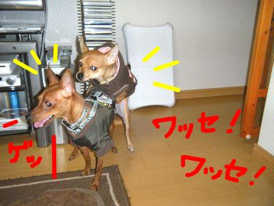 snap_yamatoss_2009112115955.jpg
