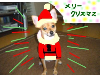 snap_yamatoss_200912615217.jpg