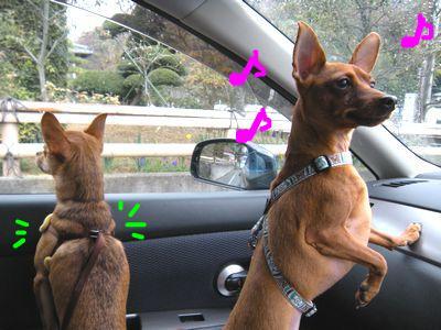 snap_yamatoss_201044145653.jpg