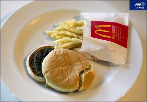 腐らないハンバーガー
