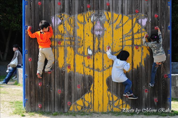 今治市市民の森・フラワーパーク(今治市制50年記念公園)の鯉のぼり(こいのぼり、鯉幟)・桜・八重桜(ヤエザクラ)・ボタン(牡丹)・ツツジ(躑躅、つつじ)・フジ棚(藤棚)・スイレン(睡蓮)など --写真は-- 今治市の桜 今治市市民の森・フラワーパーク・今治市制50年記念公園の桜など 愛媛県今治市山路 2009年4月6日