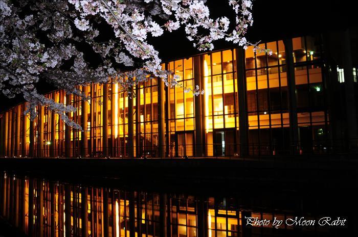 西条市のサクラ 西条市役所 総合福祉センター(西条市総合福祉センター)の夜桜 愛媛県西条市上神拝 2009年4月10日